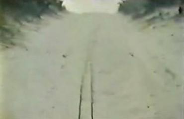 Creepshow (1982) – 29