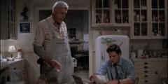 Smętarz dla zwierzaków (1989) – 06