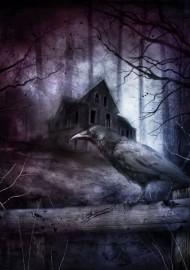 Czarny Dom – grafika