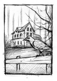 Czarny Dom – szkic