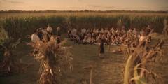 Dzieci kukurydzy (2009)  – 06