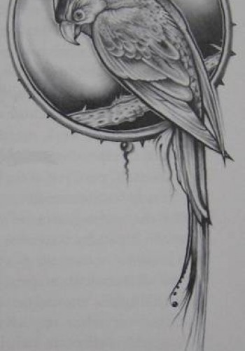 Oczy smoka – David Palladini – 5