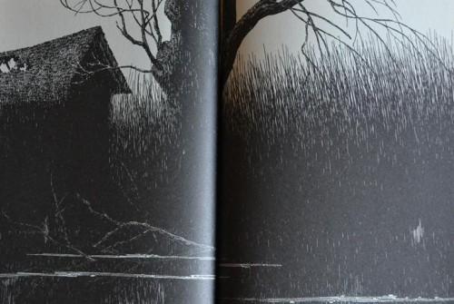 Rok wilkołaka – Bernie Wrightson – 22