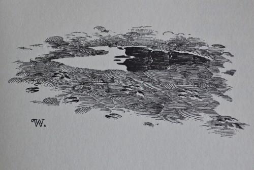 Rok wilkołaka – Bernie Wrightson – 27