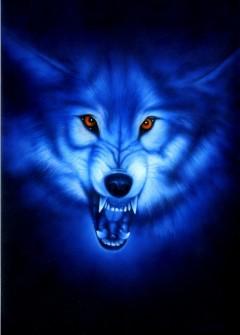 Rok wilkołaka – projekt