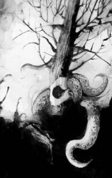 Stukostrachy ilustracja czarno-biała 5