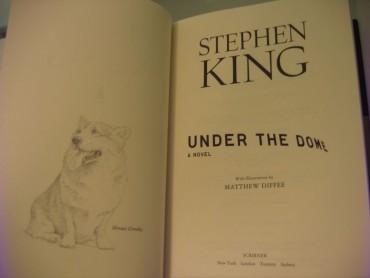 Under the Dome zdjęcie książki