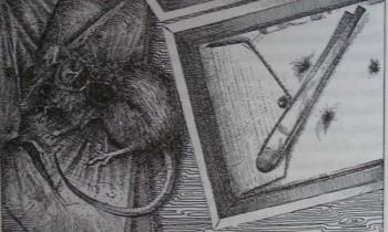 Oczy smoka – Kenneth R. Linkhauser – 11