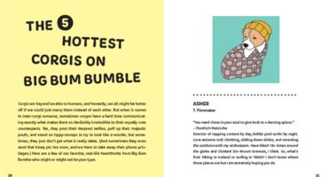 The Little Book Of Big Corgi Butts 3